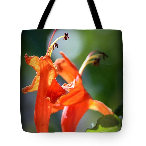 Tote Bag featuring the photograph Dancing In The Moonlight by Debra Martz