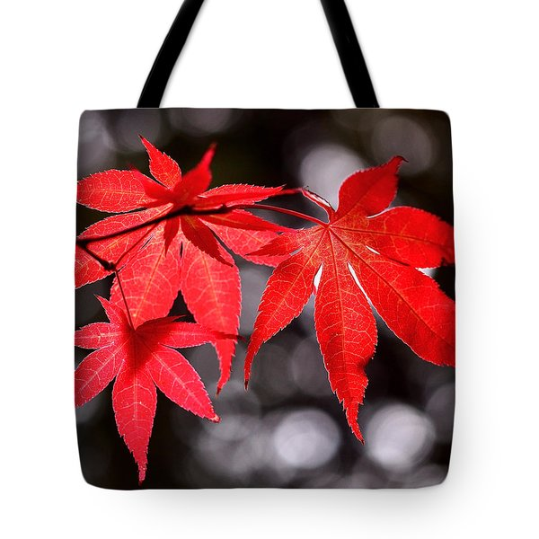 Tote Bag featuring the photograph Dancing Japanese Maple by Rona Black
