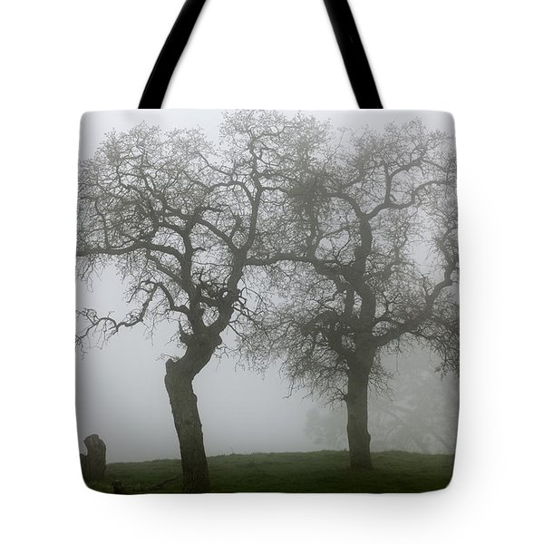 Tote Bag featuring the photograph Dancing Oaks In Fog - Central California by Ram Vasudev