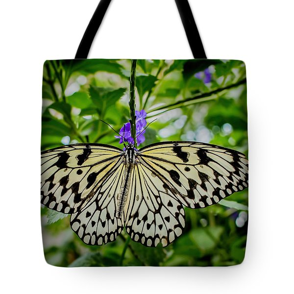 Dancing With Butterflies Tote Bag by Jon Burch Photography