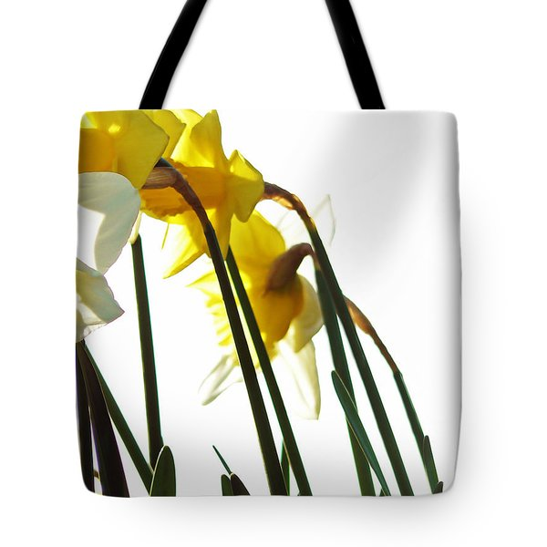Dancing With The Daffodils Tote Bag by Pamela Patch