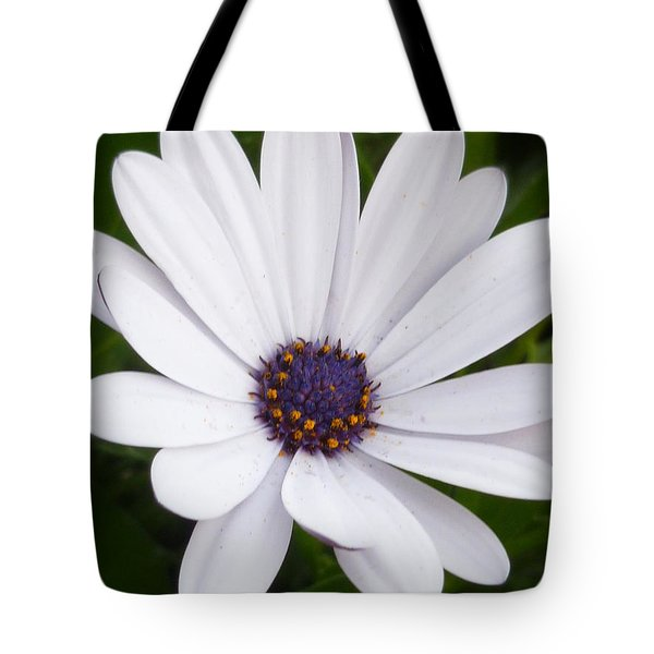 Dancing With The Morning Stars Tote Bag by Lingfai Leung