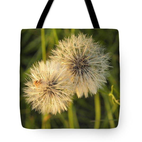Dandelion Blooms Tote Bag