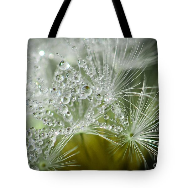 Dandelion Dew Tote Bag by Amy Porter