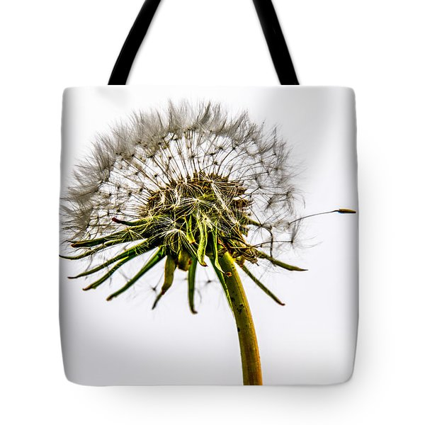 Dandelion Tote Bag by Hannes Cmarits