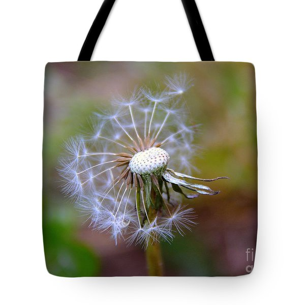 Tote Bag featuring the photograph Dandelion by Lisa L Silva
