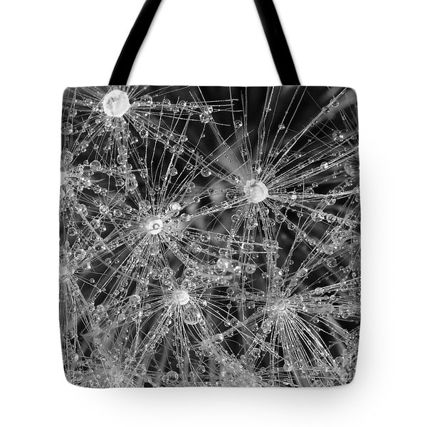 Dandelion Tote Bag by Nicholas Burningham