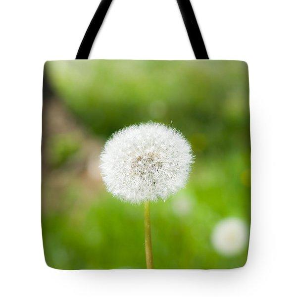 Dandelion Puffball Tote Bag
