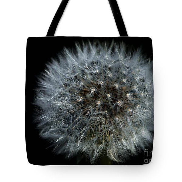 Dandelion Seed Head On Black Tote Bag by Sharon Talson