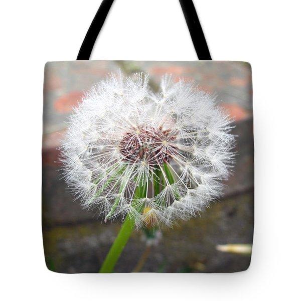 Dandelion Tada Tote Bag by Barbara McDevitt