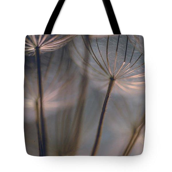 Dandelions 15 Tote Bag