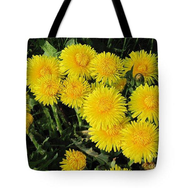 Golden Dandelions Tote Bag