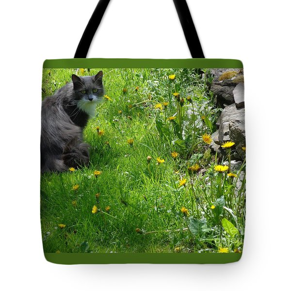 Dandy Lion Cat Tote Bag by Christina Verdgeline
