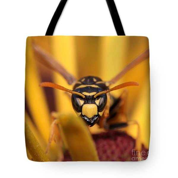 Danger Stare Tote Bag by Kenny Glotfelty