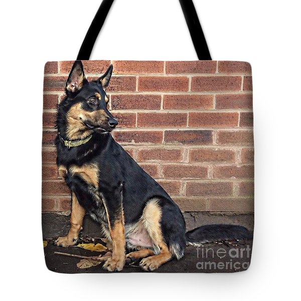 darcy. 8 Months Old Today #gsd Tote Bag