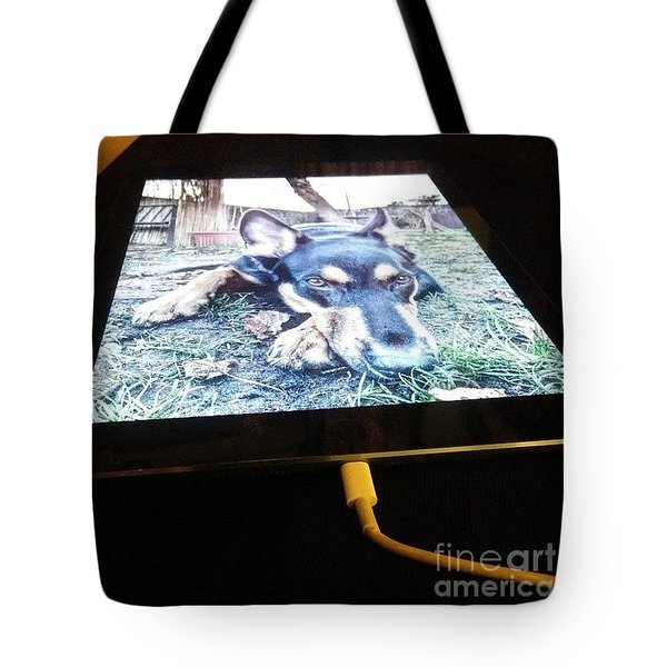 Darcy #germanshepherddog Tote Bag