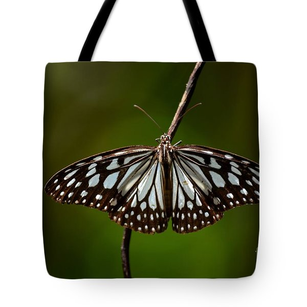 Dark Glassy Tiger Butterfly On Branch Tote Bag