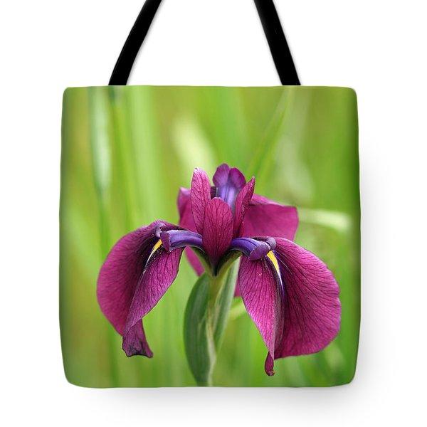 Dark Magenta Iris Tote Bag