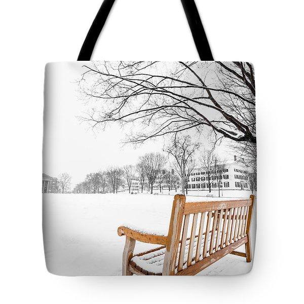 Dartmouth Winter Wonderland Tote Bag