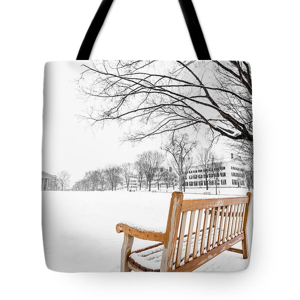 Dartmouth Winter Wonderland Tote Bag
