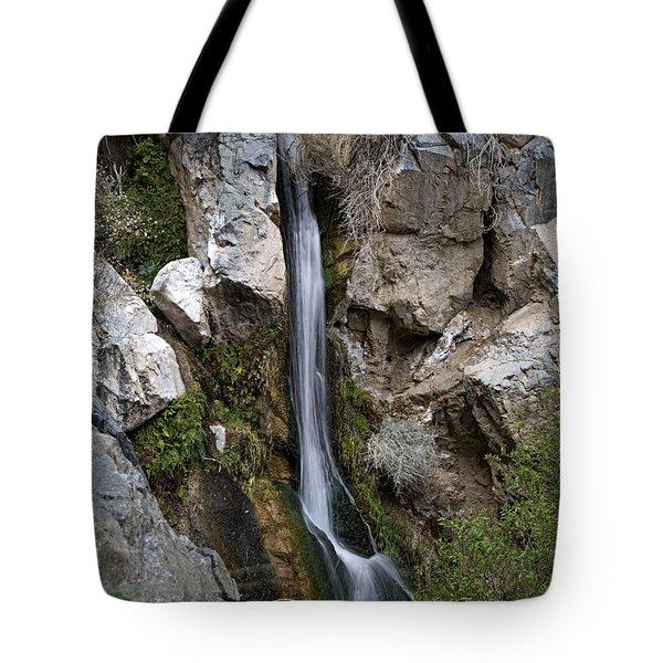 Darwin Falls Tote Bag by Joe Schofield