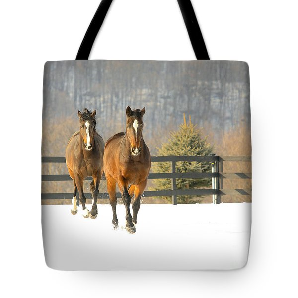 Tote Bag featuring the photograph Dashing Through The Snow by Carol Lynn Coronios
