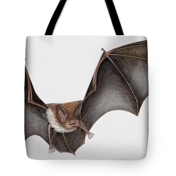 Daubentons Bat Myotis Daubentonii - Murin De Daubenton-murcielago Ribereno-vespertilio Di Daubenton Tote Bag