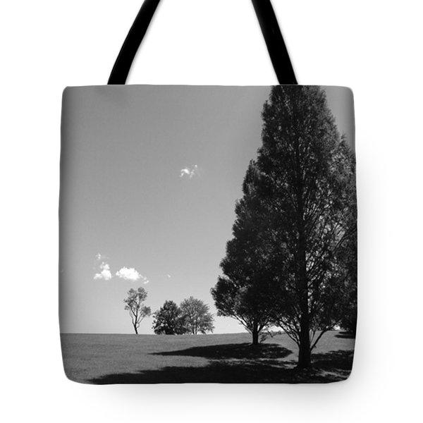 Davenport Park Tote Bag