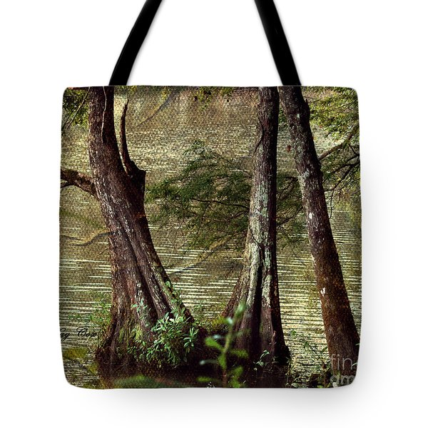 Davids River Tote Bag by Linda Cox