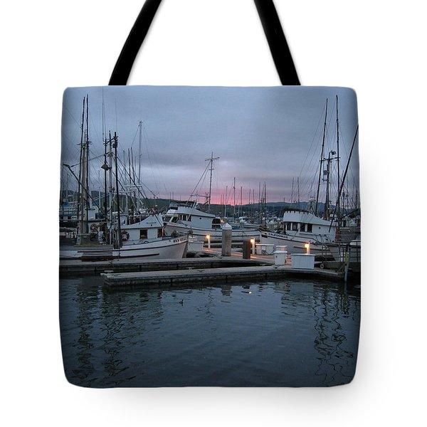 Dawn Tote Bag by Dianne Levy