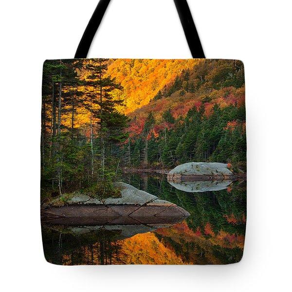 Dawns Foliage Reflection Tote Bag