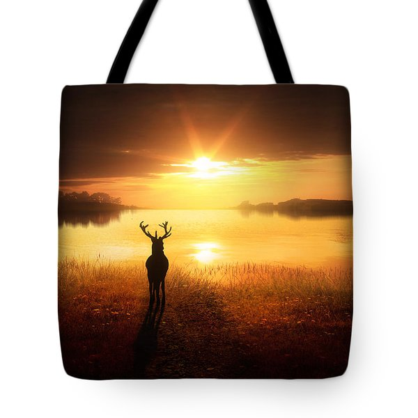 Dawn's Golden Light Tote Bag