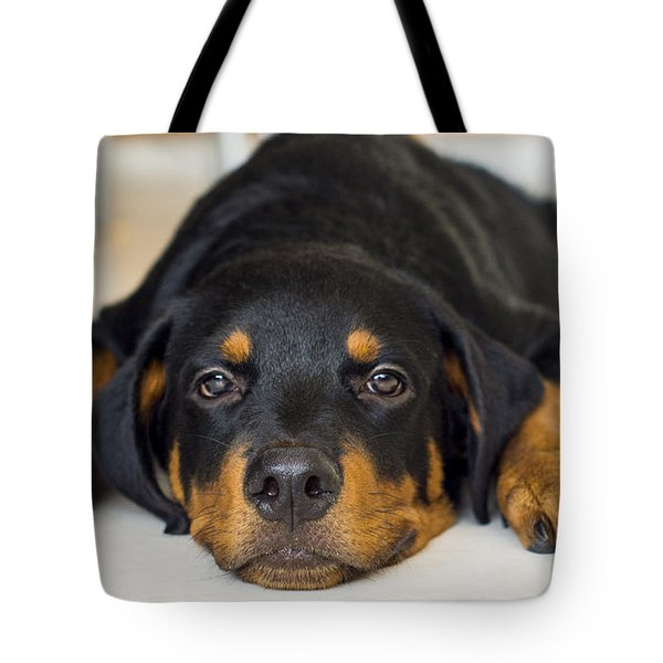 Day Dreaming Tote Bag by Aged Pixel