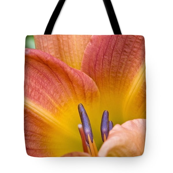Tote Bag featuring the photograph Day Lily  3 by Richard J Thompson