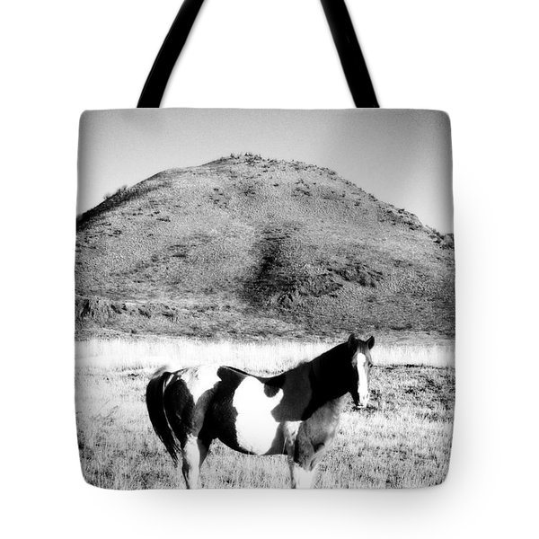 Day Moon And Paint Tote Bag