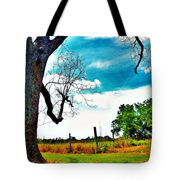 Tote Bag featuring the photograph Daydreamer by Faith Williams