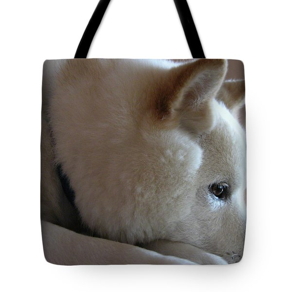 Daydreamer Tote Bag by Stuart Turnbull