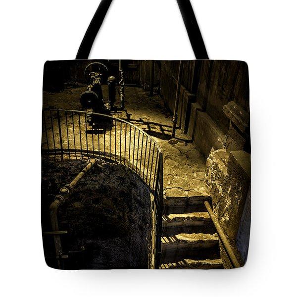 Daylight's Glimmer Tote Bag by Lynn Palmer