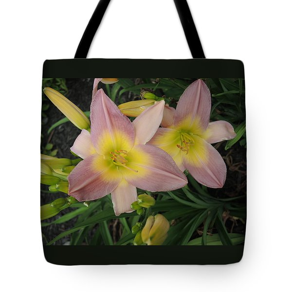 Daylilies Tote Bag by Chrissey Dittus