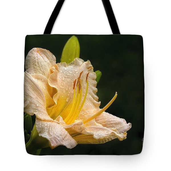 Daylily After A Morning Rain Tote Bag by Madonna Martin