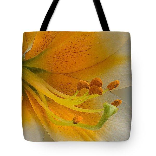 Gold Daylily Close-up Tote Bag