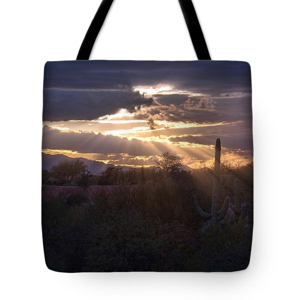 Tote Bag featuring the photograph Days End by Dan McManus
