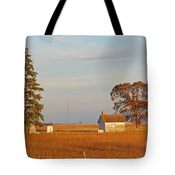 Days End Tote Bag by Mary Carol Story