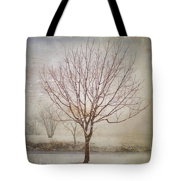 Days Of Old Tote Bag by Betty LaRue