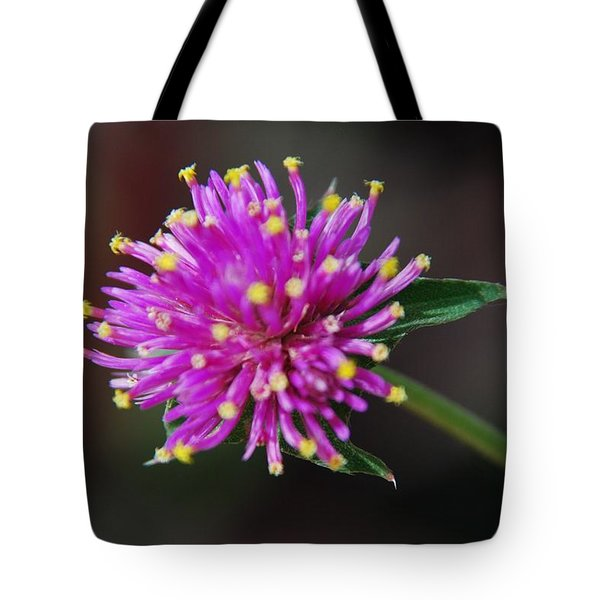 Tote Bag featuring the photograph Dbg 050812-1779 by Tam Ryan