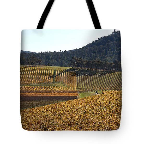 golden vines-Victoria-Australia Tote Bag by Joy Watson