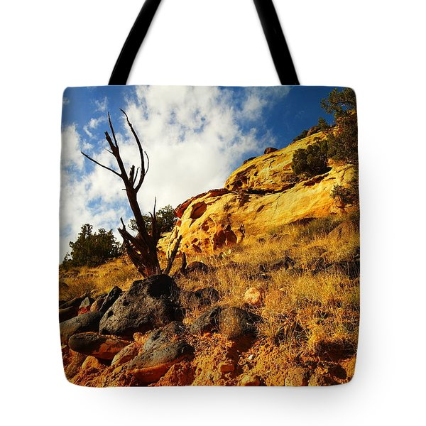 Dead Tree Against The Blue Sky Tote Bag by Jeff Swan
