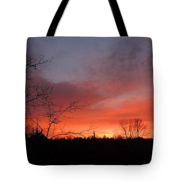 Dead Tree Sunrise Tote Bag