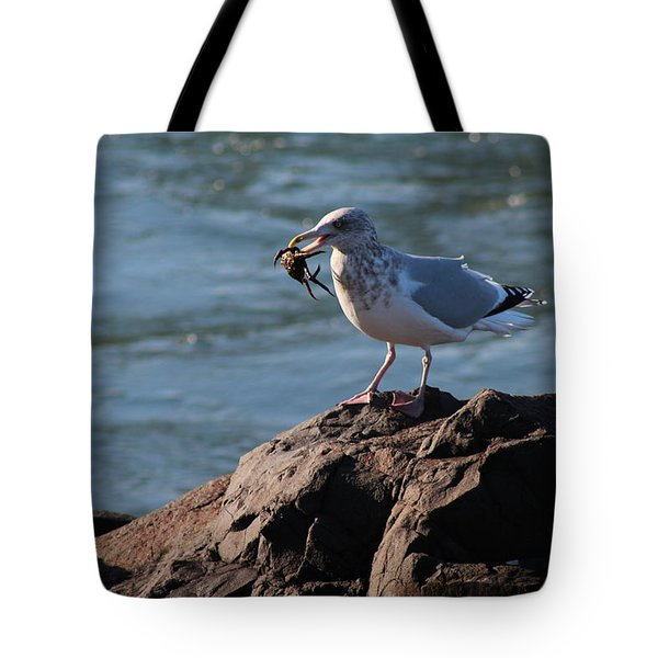 Death By Seagull Tote Bag