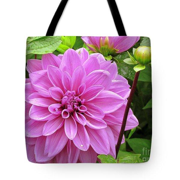 Decadent Dahlia   Tote Bag